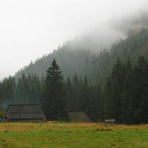 Koscieliska Valley - October 2009