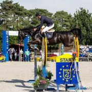 2014 - FEI World Breeding Jumping Championships for Young Horses