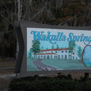 Color Color Color Assignment at Wakulla Springs 11-25-12