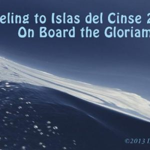 Islas del Cisne Diving