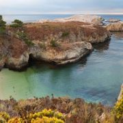 Point Lobos Natural Reserve, California