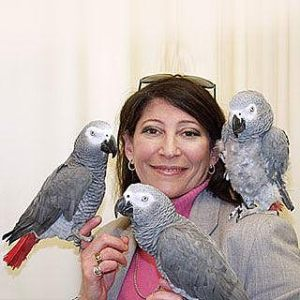 AFRICAN GREYS - IRENE PEPPERBERG.